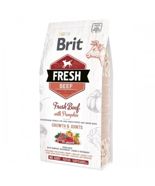 Brit Fresh Beef with Pumpkin Puppy Large 2,5 kg